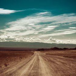 Scenic view of a rural desert area down a dirt road